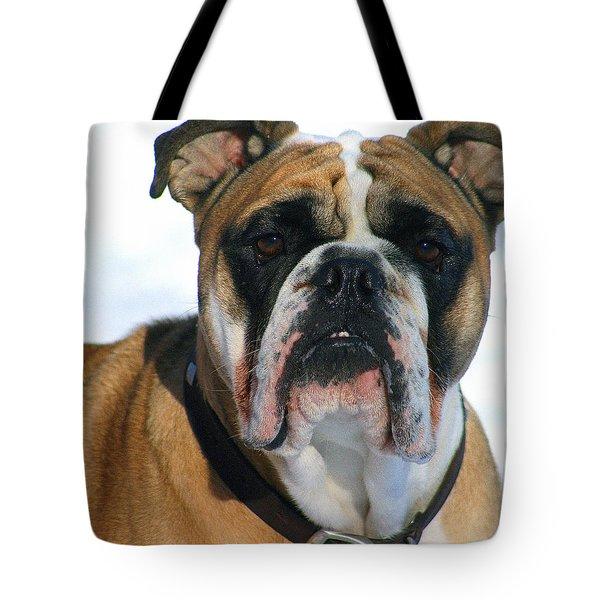Hey Good Looking Tote Bag by Kay Novy