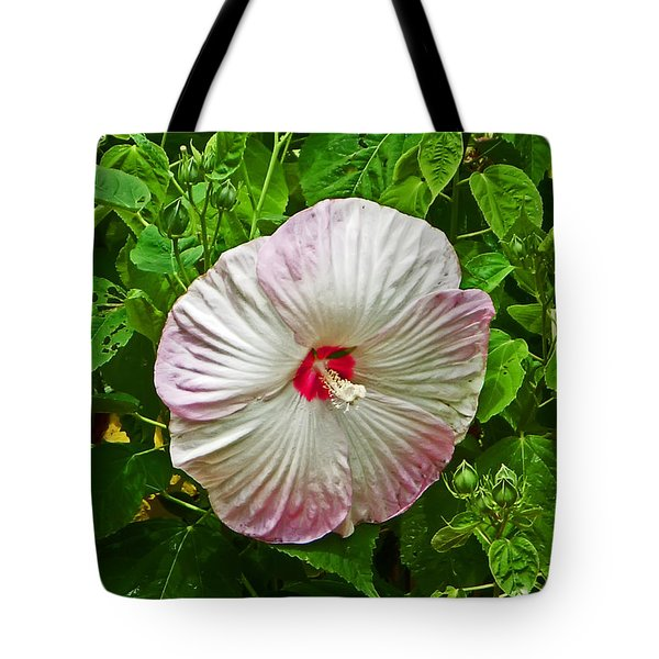 Hibiscus Tote Bag by Aimee L Maher Photography and Art Visit ALMGallerydotcom