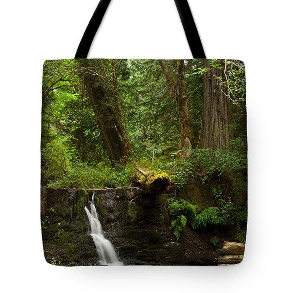 Hidden Gem Tote Bag by Randy Hall