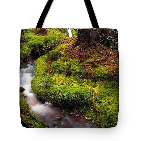 Hidden Woodland Corner. Benmore Botanical Garden. Scotland Tote Bag by Jenny Rainbow