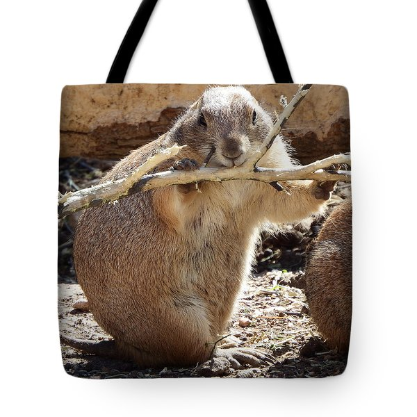 High Fiber Diet Tote Bag by David G Paul