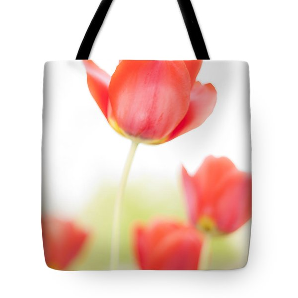 High Key Tulips Tote Bag by Adam Romanowicz