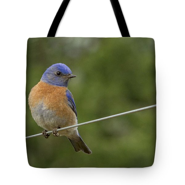 High Wire Tote Bag by Jean Noren
