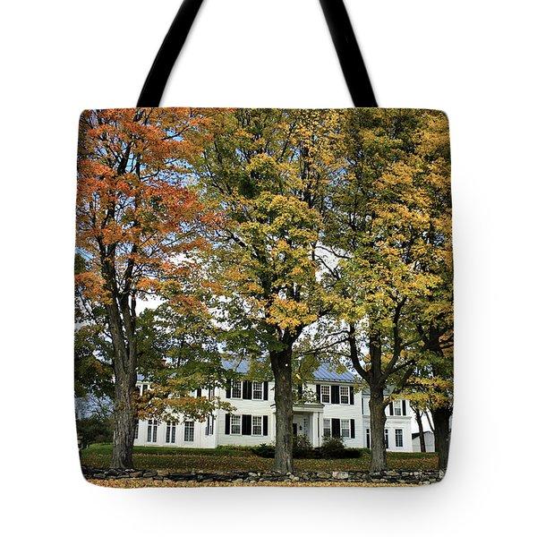 Highgate Beauty Tote Bag by Deborah Benoit