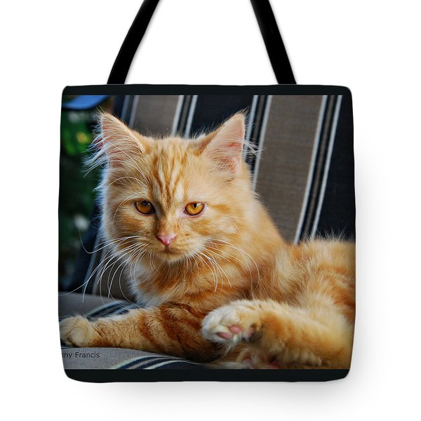 His Royal Highness Tote Bag by Kenny Francis