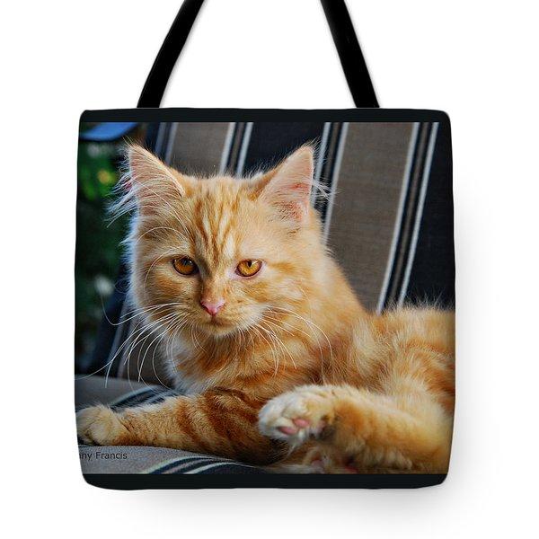 His Royal Highness Tote Bag by Kenny Francis