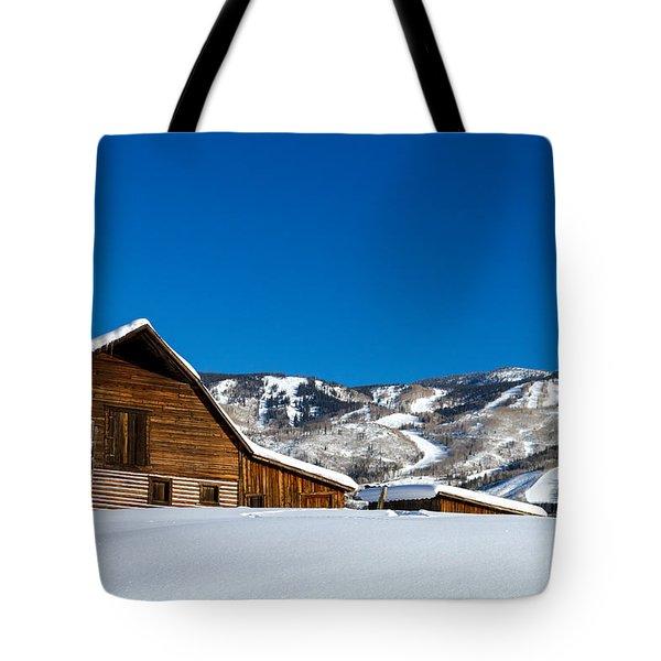 Historic Steamboat Spring Barn Tote Bag by Teri Virbickis