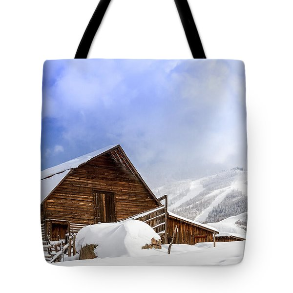 Historic Steamboat Springs Barn And Ski Area Tote Bag by Teri Virbickis