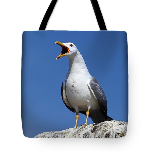 Holding Forth Tote Bag by James Brunker