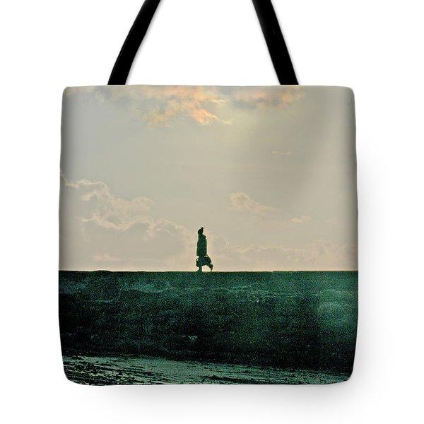 Homeward Bound Tote Bag by Terri Waters