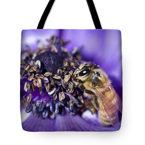 Honeybee And Anemone  Tote Bag by Priya Ghose