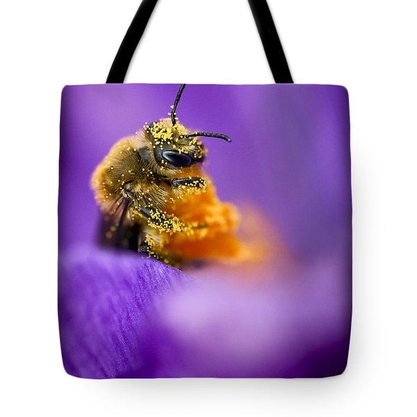 Honeybee Pollinating Crocus Flower Tote Bag by Adam Romanowicz