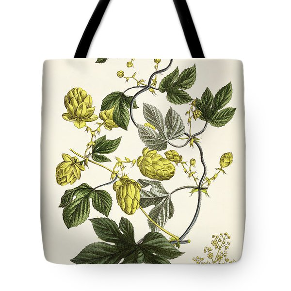 Hop Vine From The Young Landsman Tote Bag by Matthias Trentsensky