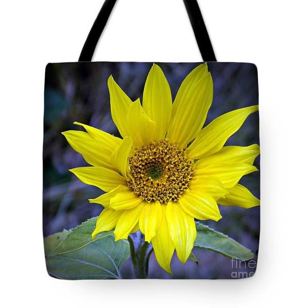 Hopeful Too Tote Bag by Chalet Roome-Rigdon