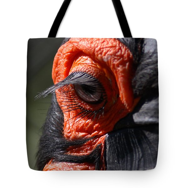Hornbill Closeup Tote Bag by David Salter