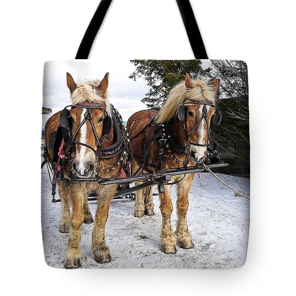 Horse Drawn Sleigh Tote Bag by Edward Fielding