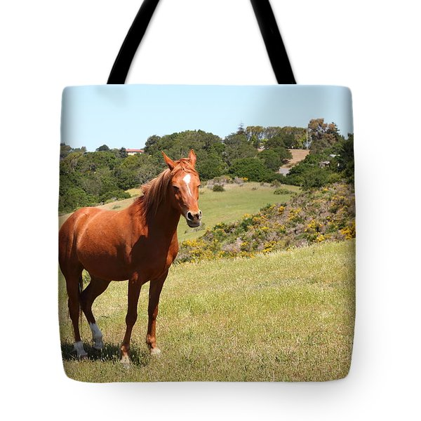 Horse Hill Mill Valley California 5D22679 Tote Bag by Wingsdomain Art and Photography