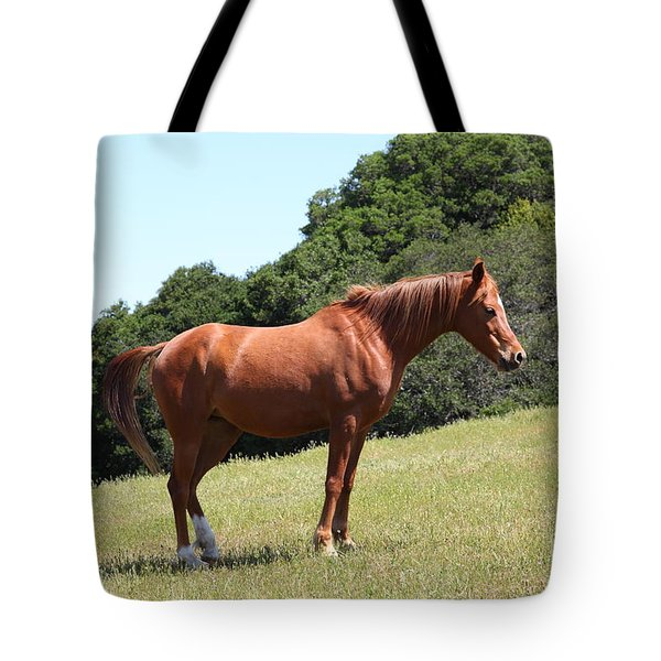 Horse Hill Mill Valley California 5d22683 Tote Bag by Wingsdomain Art and Photography