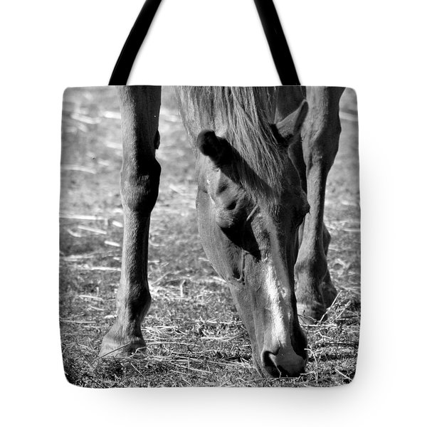 Horse In Black And White Tote Bag by Art Block Collections