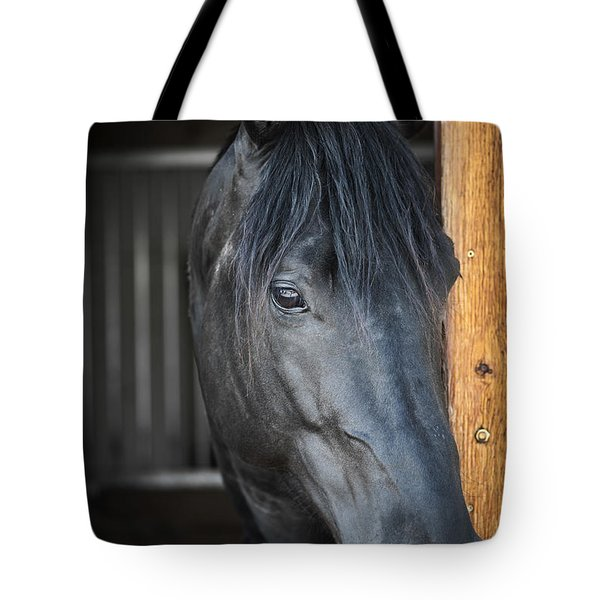 Horse in stable Tote Bag by Elena Elisseeva