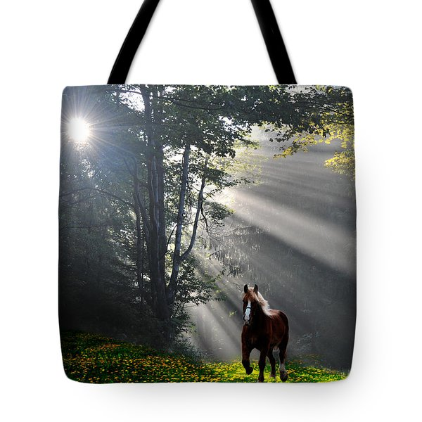 Horse Running In Dandelion Field With Streaming Sunlight Tote Bag by Dan Friend