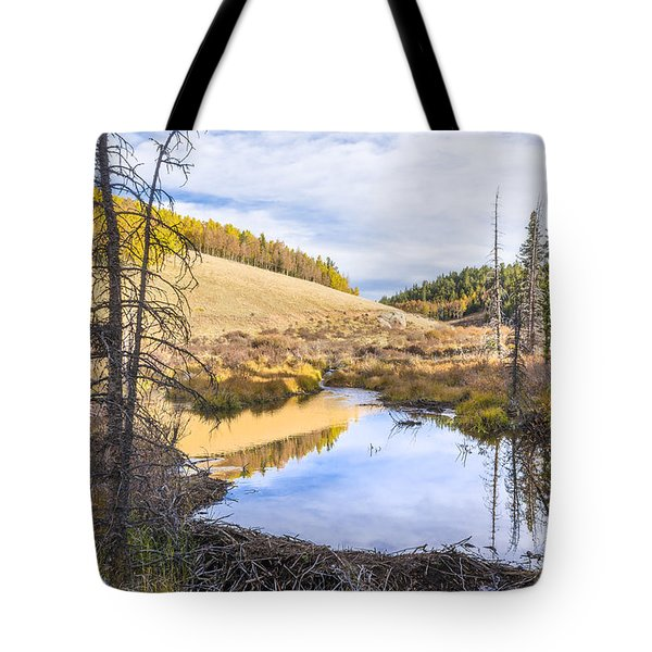 Horsethief Creek Beaver Pond - Cripple Creek Colorado Tote Bag by Brian Harig