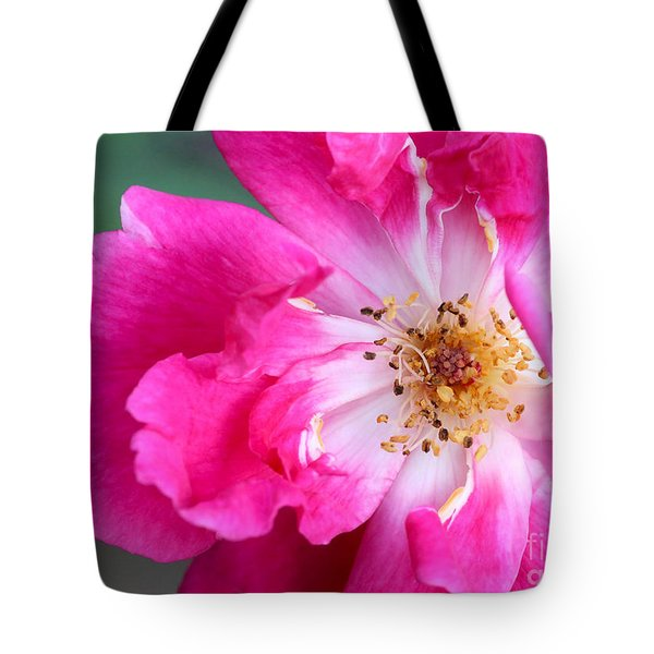 Hot Pink Rose Tote Bag by Sabrina L Ryan