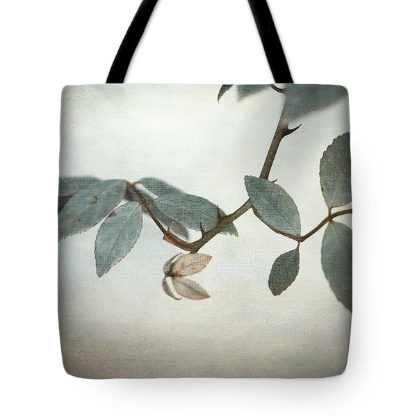 How Delicate This Balance Tote Bag by Laurie Search
