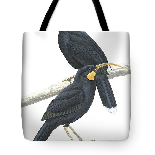 Huia Tote Bag by Anonymous