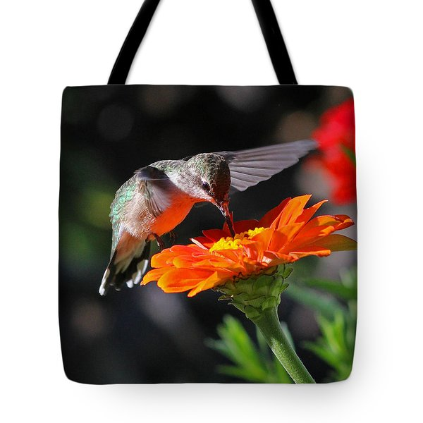 Hummingbird And Zinnia Tote Bag by Steve Augustin