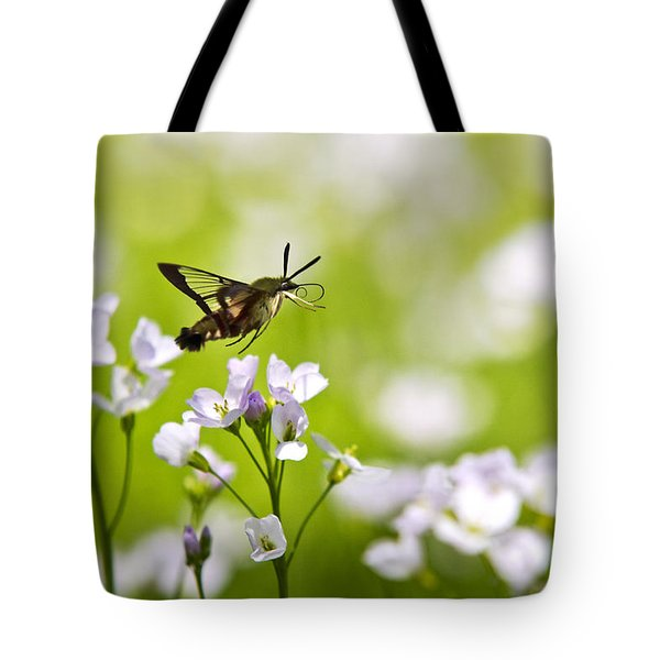 Hummingbird Clearwing Moth Flying Away Tote Bag by Christina Rollo