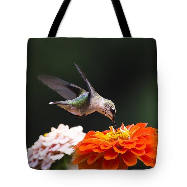 Hummingbird in Flight with Orange Zinnia Flower Tote Bag by Christina Rollo