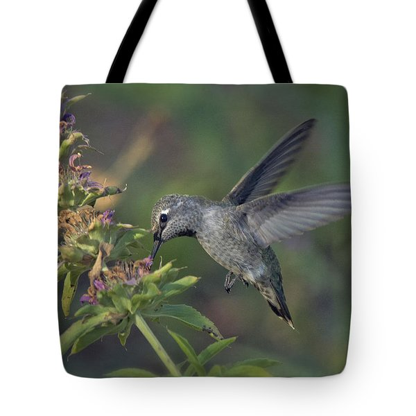 Hummingbird In The Morning Light Tote Bag by Saija  Lehtonen