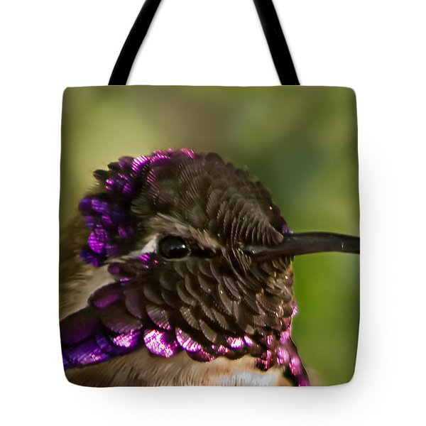 Hummingbird Portrait Tote Bag by Robert Bales