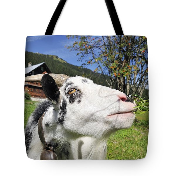 Hungry Goat Tote Bag by Matthias Hauser