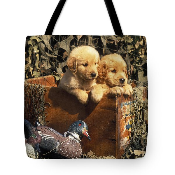 Hunting Buddies - Fs000130 Tote Bag by Daniel Dempster