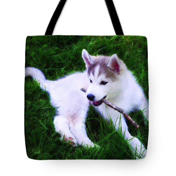 Huskie Pup Playing Fetch Tote Bag by Bill Cannon