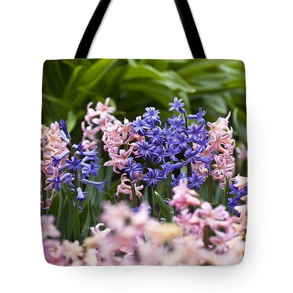 Hyacinth Garden Tote Bag by Frank Tschakert