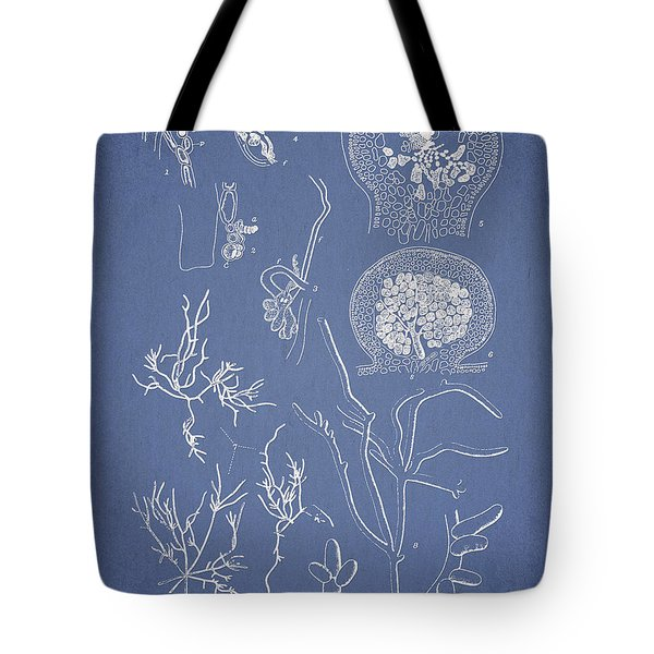 Hyalosiphonia Caespitosa Okamura Valonia Confervoides Tote Bag by Aged Pixel