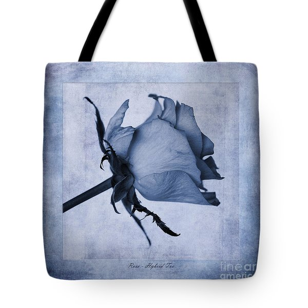 Hybrid Tea Rose Cyanotype Tote Bag by John Edwards