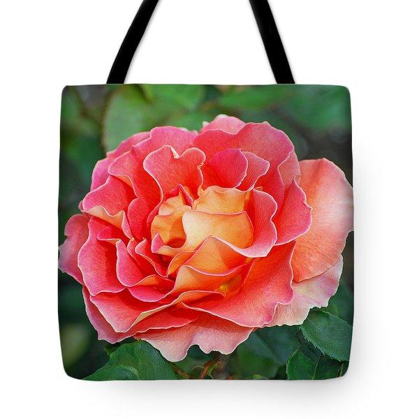 Hybrid Tea Rose  Tote Bag by Lisa Phillips