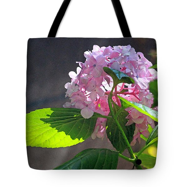Hydrangea Heaven Tote Bag by Suzanne Gaff