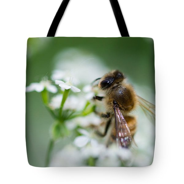 I am busy - Featured 3 Tote Bag by Alexander Senin