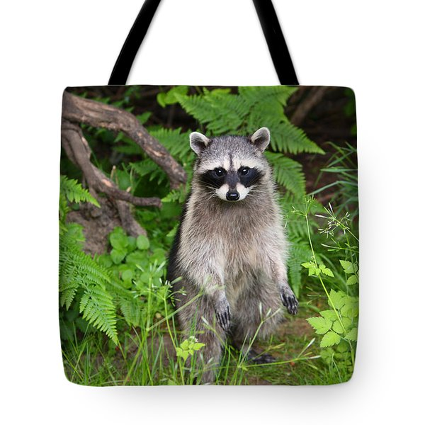 I Am Standing Up Straight Tote Bag by Kym Backland