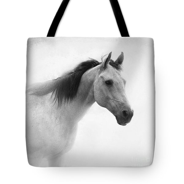 I Dream Of Horses Tote Bag by Betty LaRue