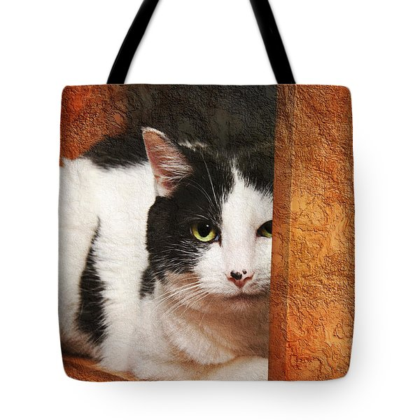 I Have My Eye On You Tote Bag by Andee Design