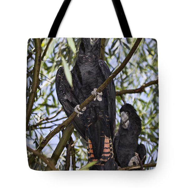 I Say Old Chap Tote Bag by Douglas Barnard