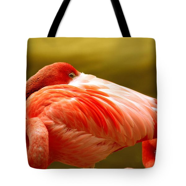 I See You Tote Bag by Cheryl Young