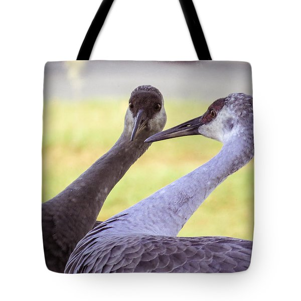 I See You Tote Bag by Zina Stromberg