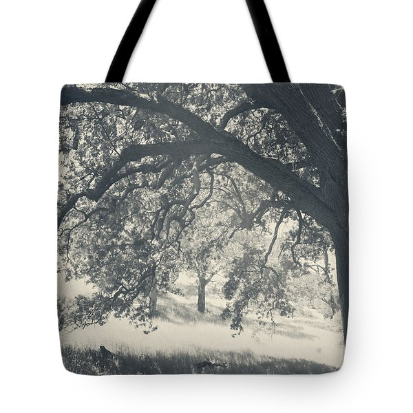 I Would Wrap My Arms Around You Tote Bag by Laurie Search